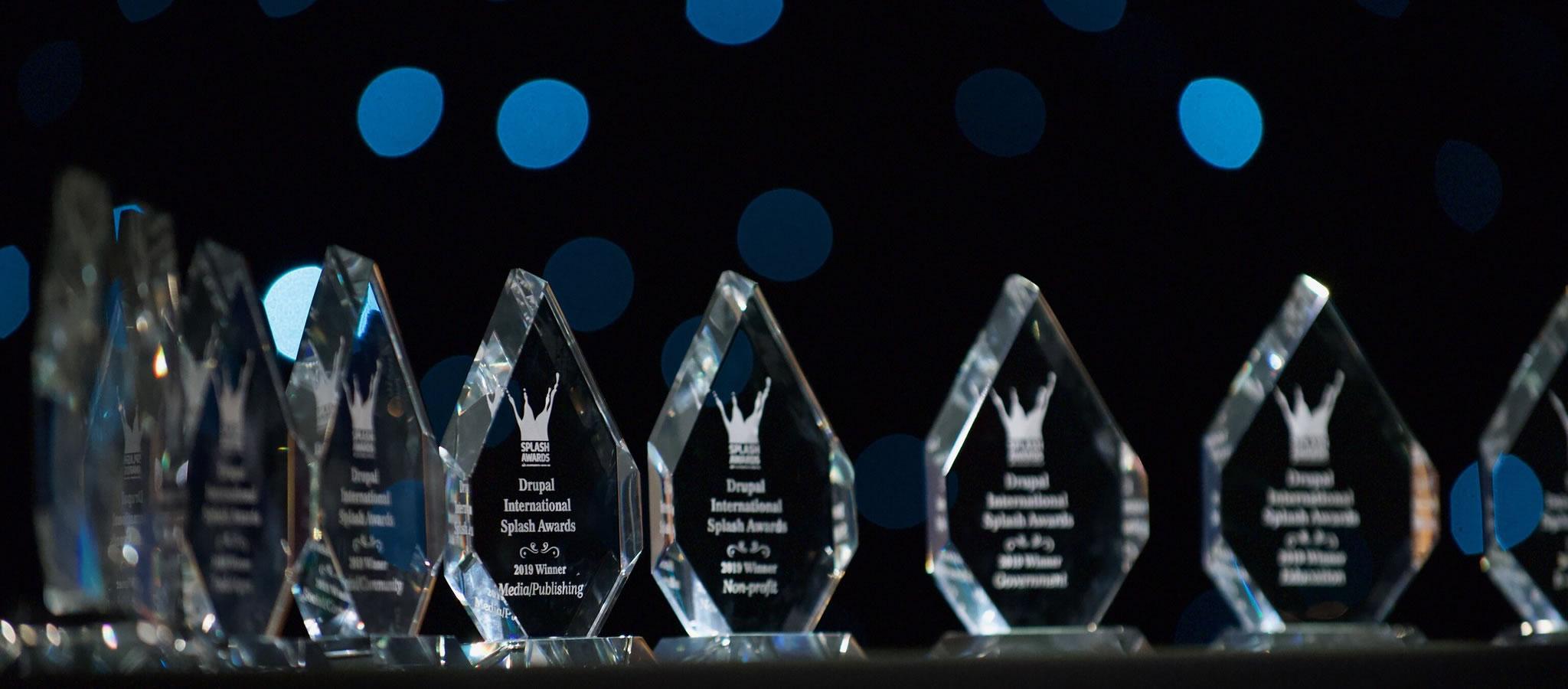 "Non-profit: Drupal International Splash Awards"" v Seattle (USA)"